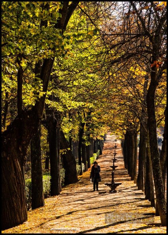 Parque-del-Retiro-image