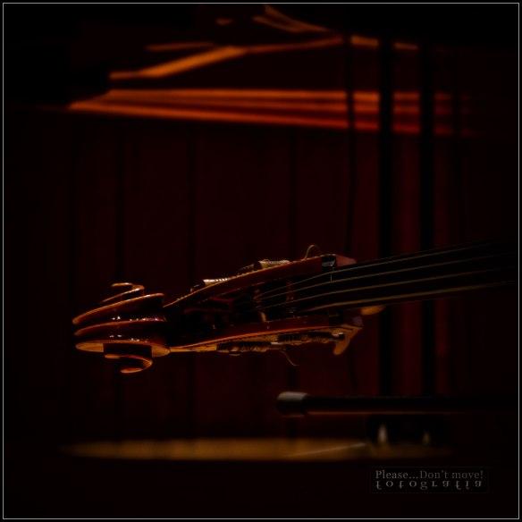 Christian-McBride-VII-Picture