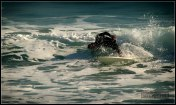 Surfing-in-Barcelona-X-picture