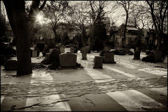 Evangelischer St. Petri-Friedhof, Berlín.