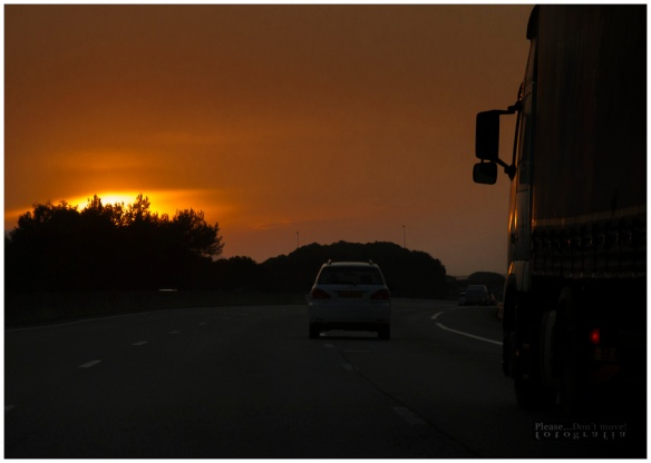 Road-movie-8