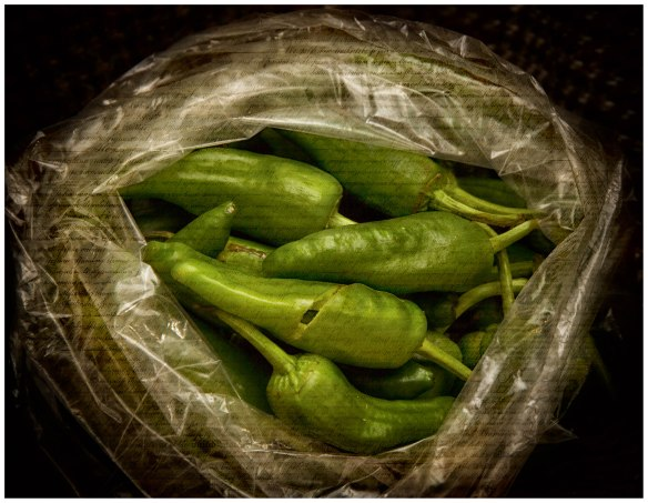 Padron_peppers_image
